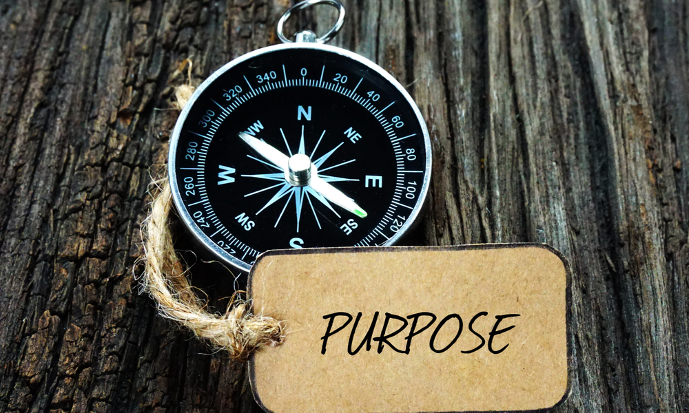 The Power of Purpose and How Team Building Activities can Enhance It